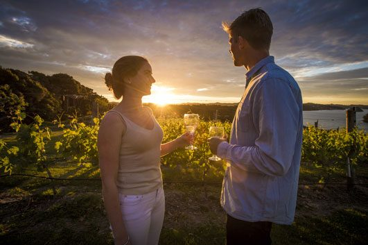 Bay Of Islands Wine Tours