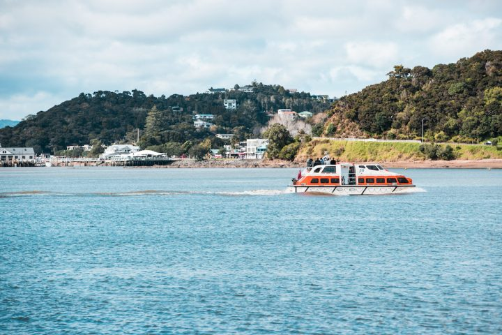 Cruise ship tenders arriving in the Bay of Islands
